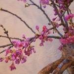 2014_spring_3